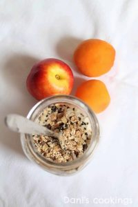 overnight oats in a jar with peaches and apricots aside