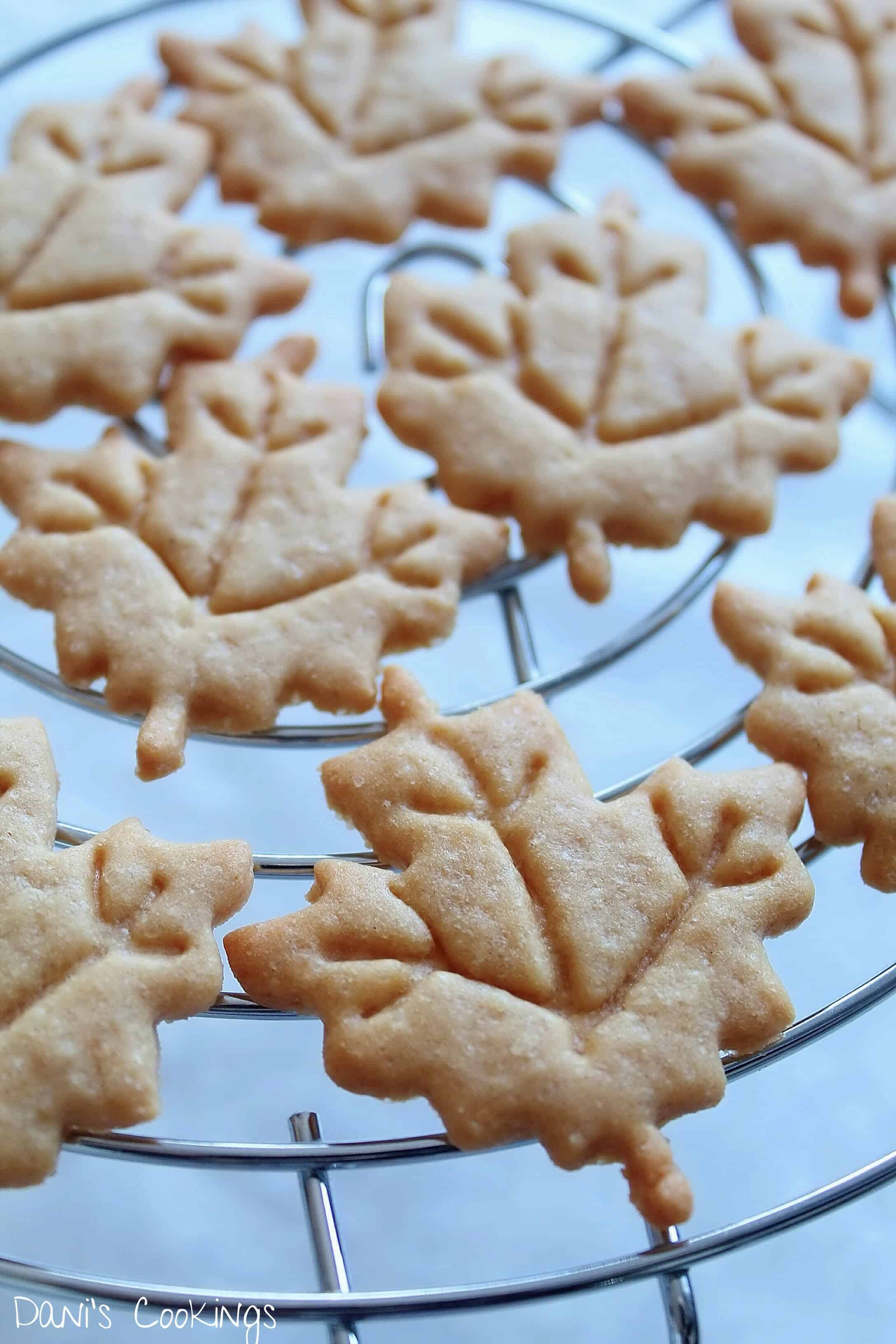 maple shaped cookies on a wire rach